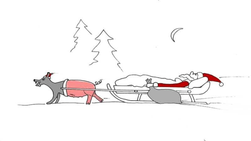 Schweinehund vor Weihnachtsmannschlitten